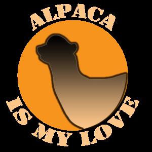 Alpaca is my Love