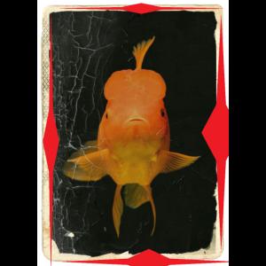 Handyhuelle Fisch Goldfisch Glas Geschenk Tier