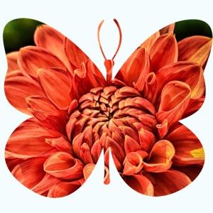 Naturwesen - Schmetterling