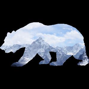 Mountain Bear
