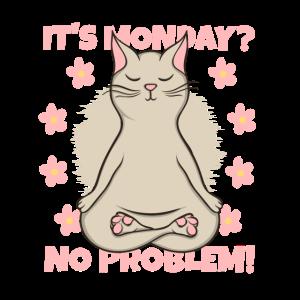 Yoga Katze Yogi Kätzchen