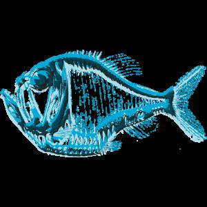 Tiefsee Beilfisch Unterwasserwelt Meeresbewohner