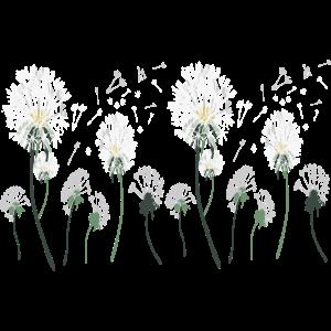 pusteblumen wiese,Dandelion meadow