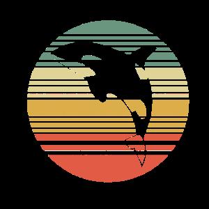 Orca Wal Wale t-shirt Geschenk