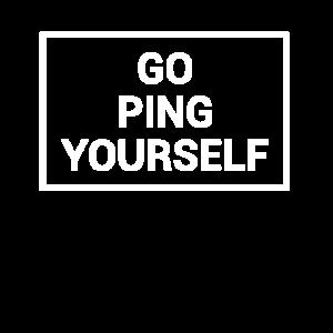 Informatik - Ping dich doch selbst