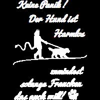 Keine Panik Der Hund ist Harmlos