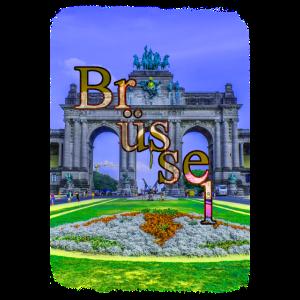 Brüssel Jubelpark Erholung Belgien