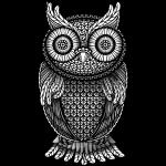 Pöllö Huuhkaja