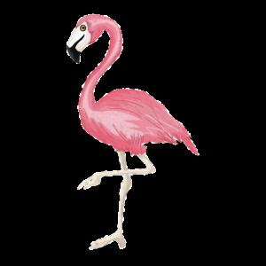 Cool trendy stylish pink rose flamingo present