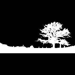 Bergisches Land - Baum auf dem Lande