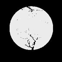 Silhouette Leerer Baum mit Mond Herbst Farben