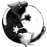 Black and White - Yin Yang - Katzen