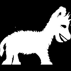 Lama Pony Esel Baby