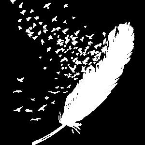 Feder Vogel Bird Papagei Schwalbe Wellensittich