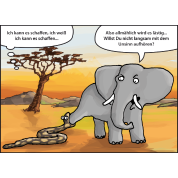 Cadeaux éléphant