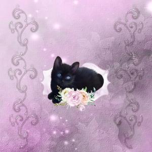 Niedliche Kätzchen mit Blumen