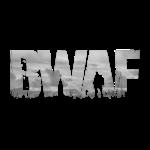 BWAF Z Logo Cutout