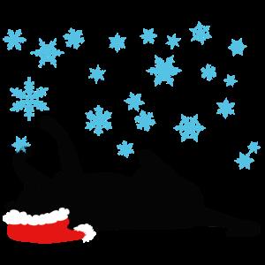 Katze spielt mit Schneeflocken