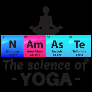 Namaste Die Wissenschaft des Yoga Geschenk
