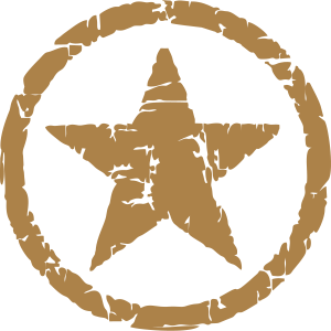 Army Star Stern Vintage