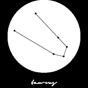 Sternzeichen Stier Geschenk Idee