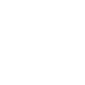 Fly with the eagle