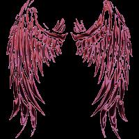 Engel Teufel Fluegel Angel Devil Wings 2reborn bad