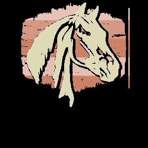 Pferd Ross Reiten Reitsport