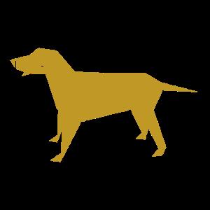 Hund geometrisch