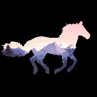 Pferd Wild Natur