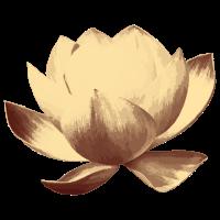 Lotusblume retro - gelbbraun
