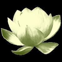 Lotusblume retro - olivgrün