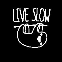Niedliches Sloth Live Slow, hängende Sloths