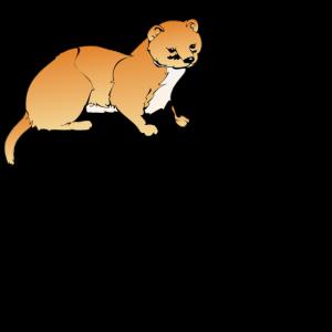 Nicht wie Otters Geschenk Marder Wiesel Tier Vegan