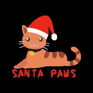 Nikolaus Katze Kätzchen Weihnachtsmann Geschenk
