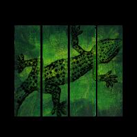 Gecko Echse Eidechse Leguan Reptil