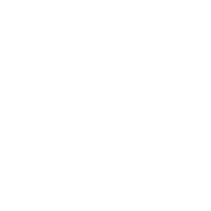 Papagei Vogel