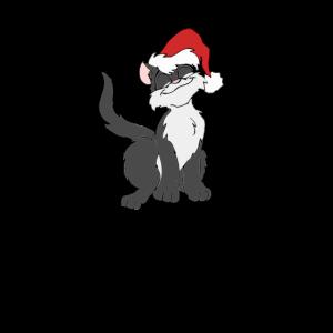 Katze Weihnachtsmütze Mietze
