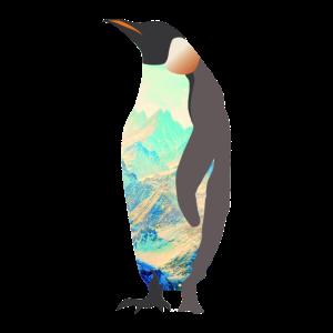 Pinguin Antarktis Geschenkidee