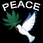 Wiet vredesduif