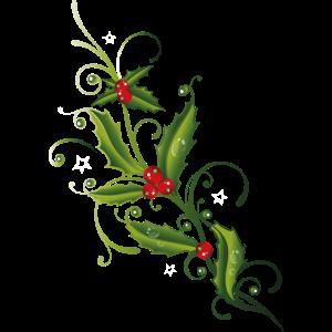 Stechpalme Ilex rote Beeren Holly Weihnachten