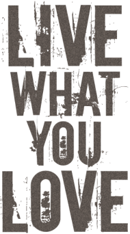Valentinstag Shirt: live what you love