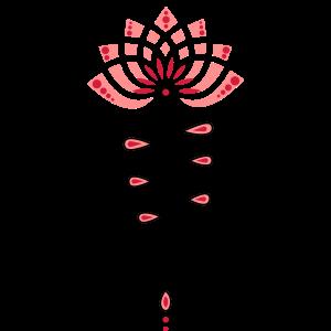 Lotus Lotusblüte Lotusblume