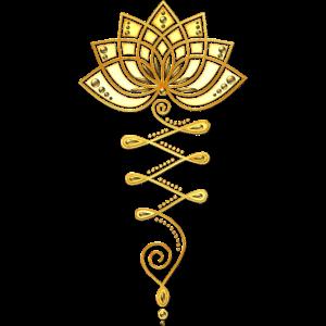 Lotus Unalome Lotusblume Lotusblüte
