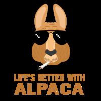 Cooles Alpaka - Besseres Leben