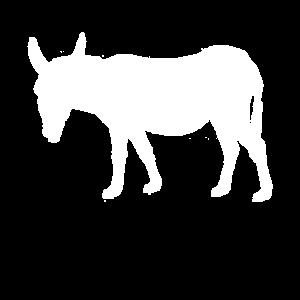 Esel Donkey | Muli | Langohr | Maultier | Geschenk