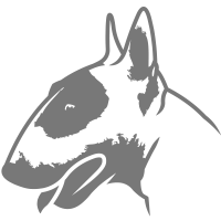 Bullterrier head_4light_1c