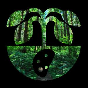 Kartoffel im Wald Dschungel Natur Biologisch