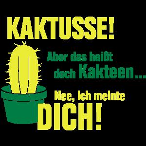 Kaktusse