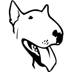 bull terrier small